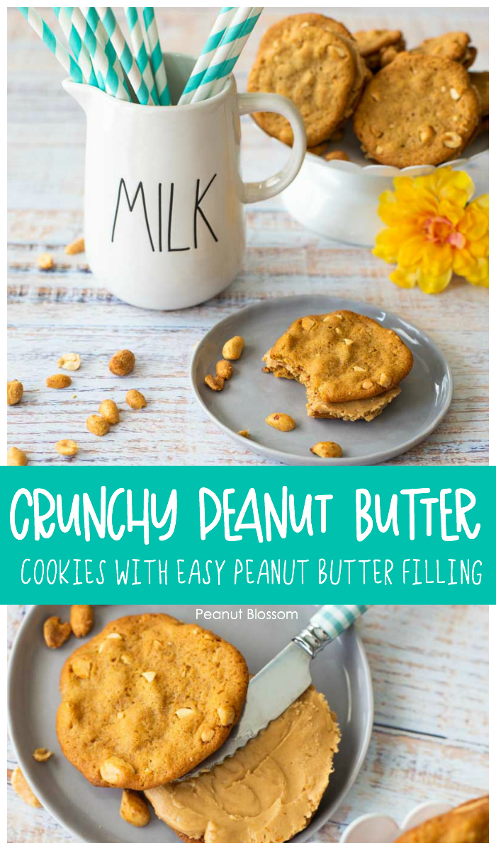 Crunch peanut butter cookies with easy peanut butter filling are fun to bake with kids.