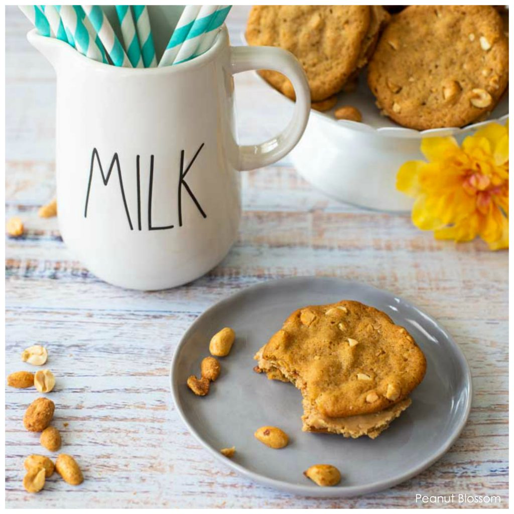Easy crunchy peanut butter cookies sandwiched with creamy peanut butter filling.