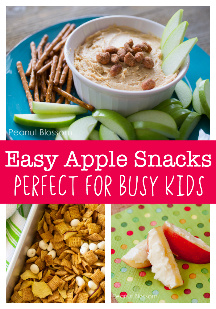 Easy apple snack recipes for busy families on the go!