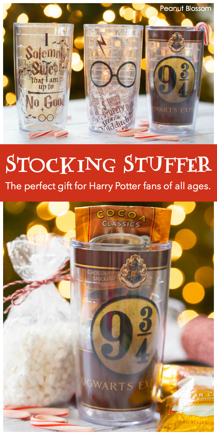 The perfect gift idea for Harry Potter fans: Give them a hot cocoa kit tucked inside a brand new Harry Potter Tervis cup.