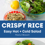 A graphic shows the ingredients for the crispy rice salad on top and the finished salad below.