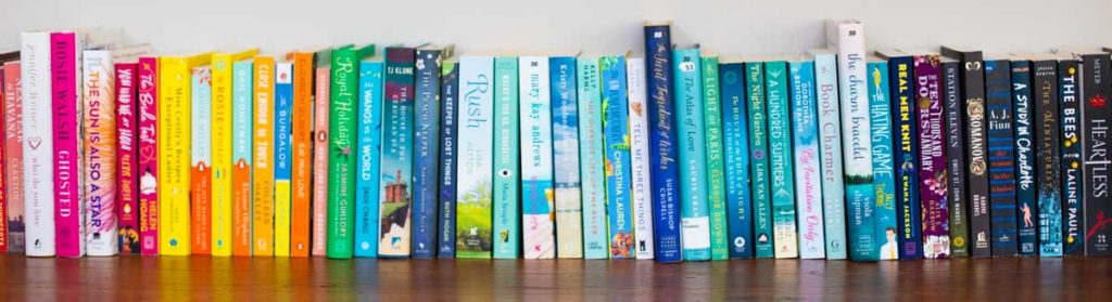 A row of colorful book club picks sit on a shelf.
