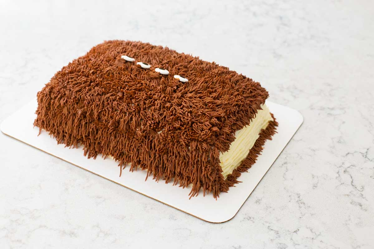 """The back side of the cake is the """"book spine"""" and is covered in brown frosting."""